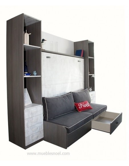 Liquidación con sofá y librerías
