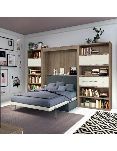 Libreria con cama abatible abierta y sofa delante