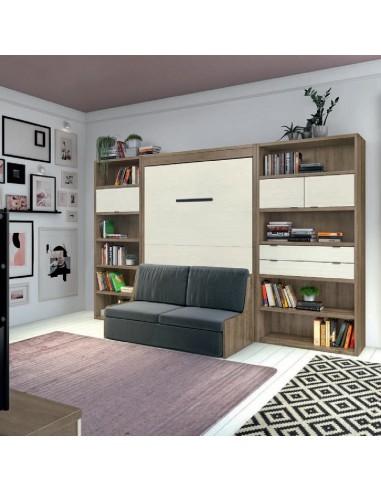 Librería con cama abatible en la pared y sofá delante.